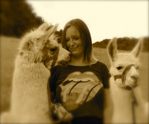 Foto mit Lamas bearbeitet