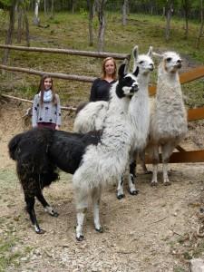 Mit Emma und den Lamas